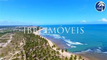 Launch Beira Mar