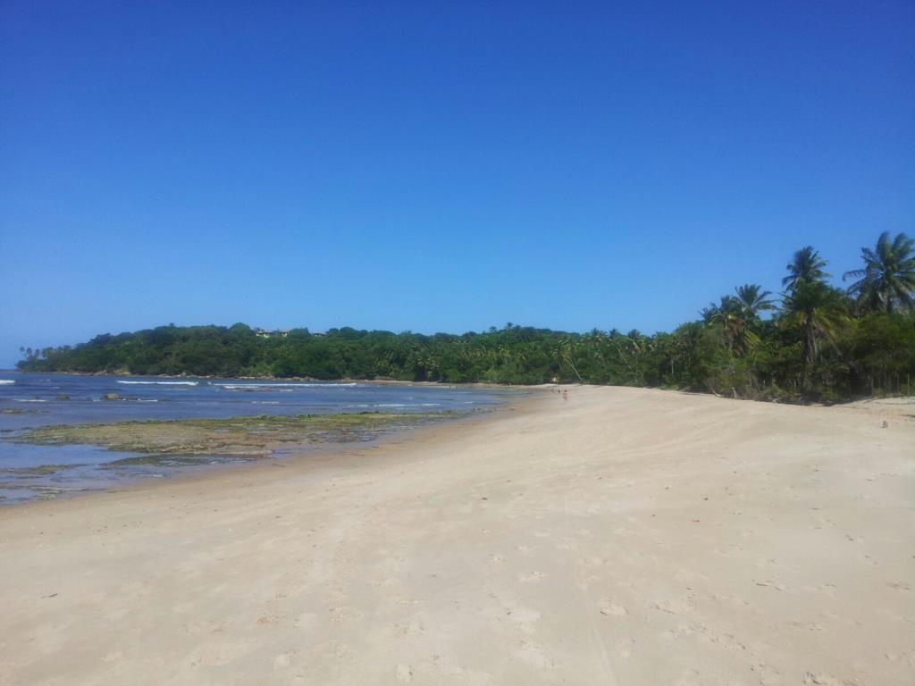 Beautiful Lot Near Boca Da Barra 7