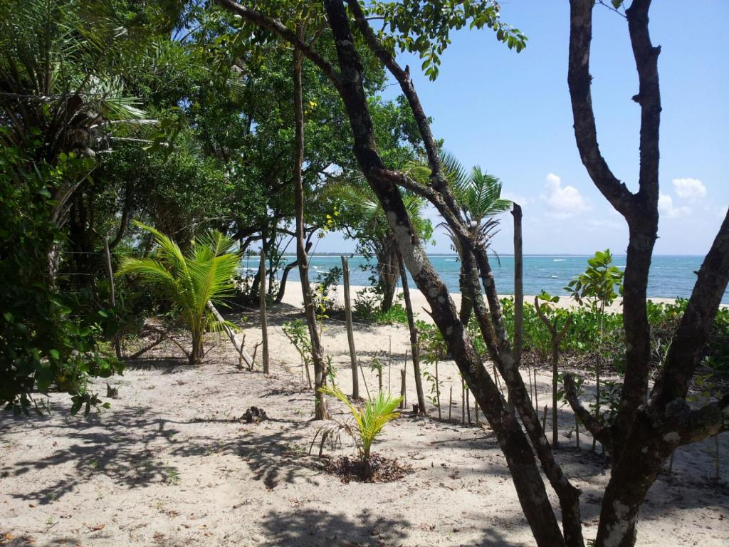 Beautiful Lot Near Boca Da Barra 8