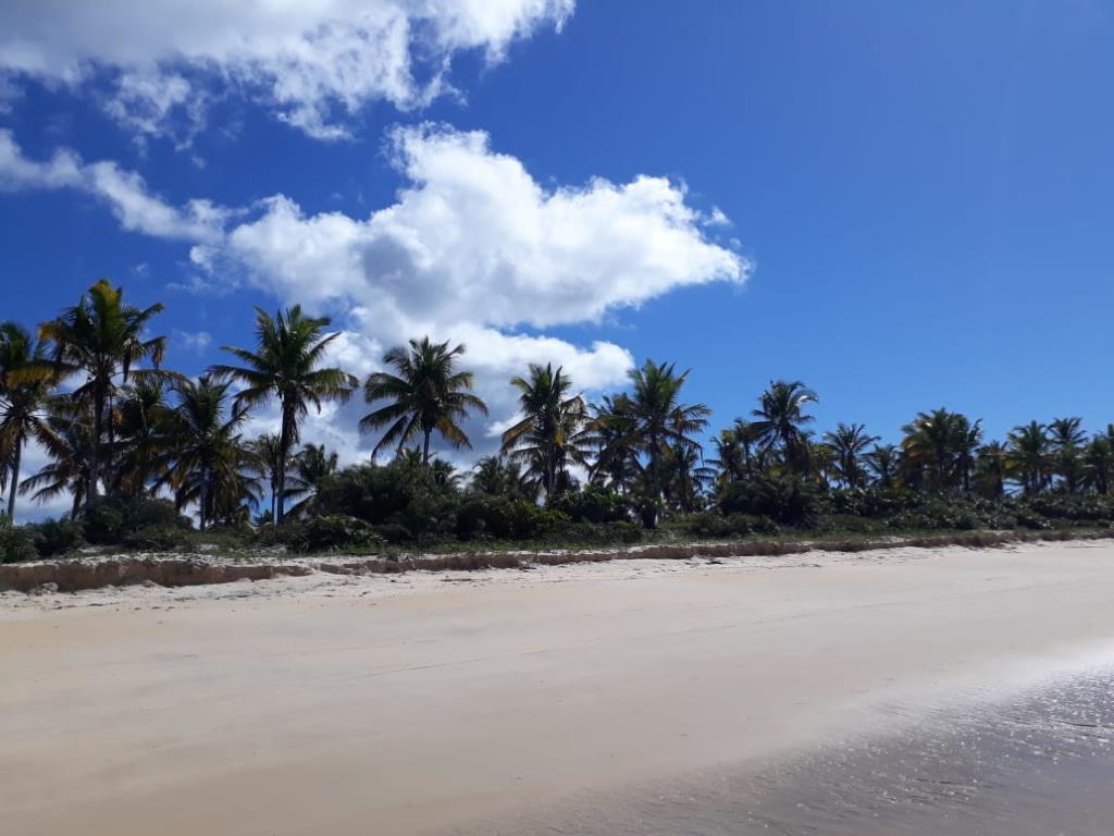 Bellissima Terra Mare Fronte Piede Nella Sabbia 10