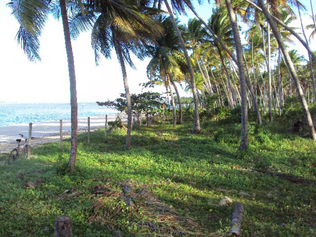 Lot vicino alla spiaggia 2