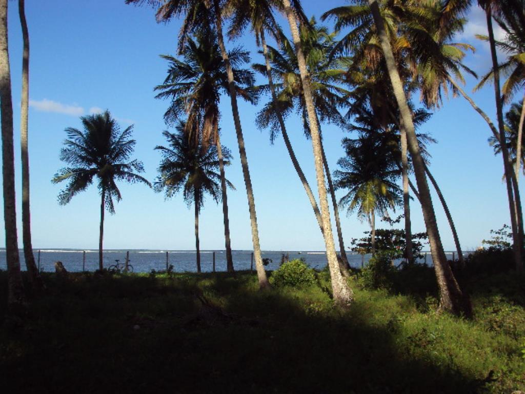 Lot vicino alla spiaggia 4