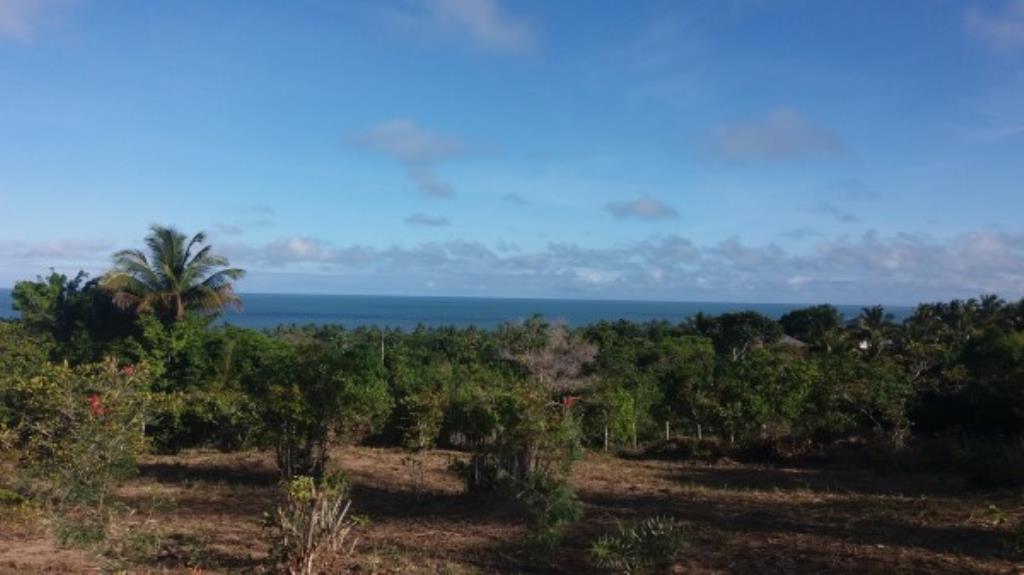 Frente maravillosa tierra-mar 2