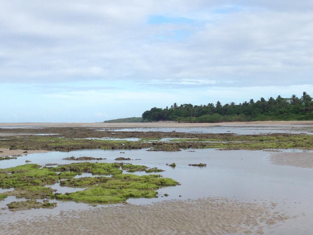 Ótimo Terreno Na Quinta Praia  1