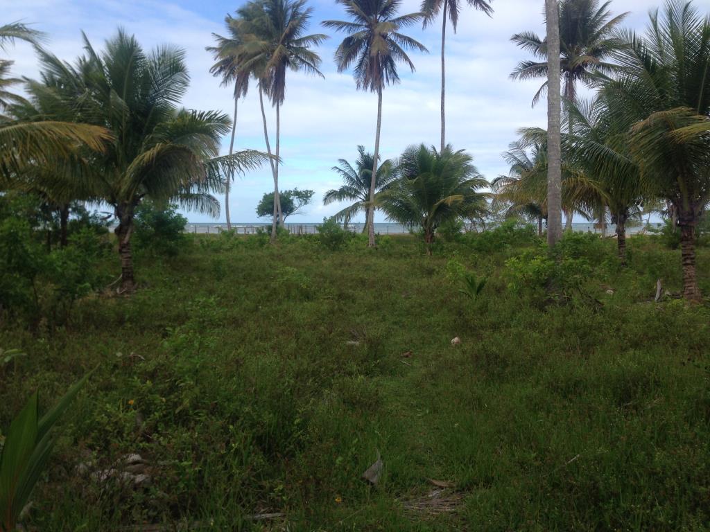 Ótimo Terreno Na Quinta Praia  2