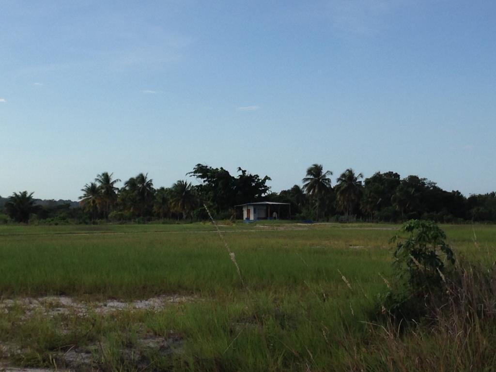Ótimo Terreno Na Quinta Praia  4