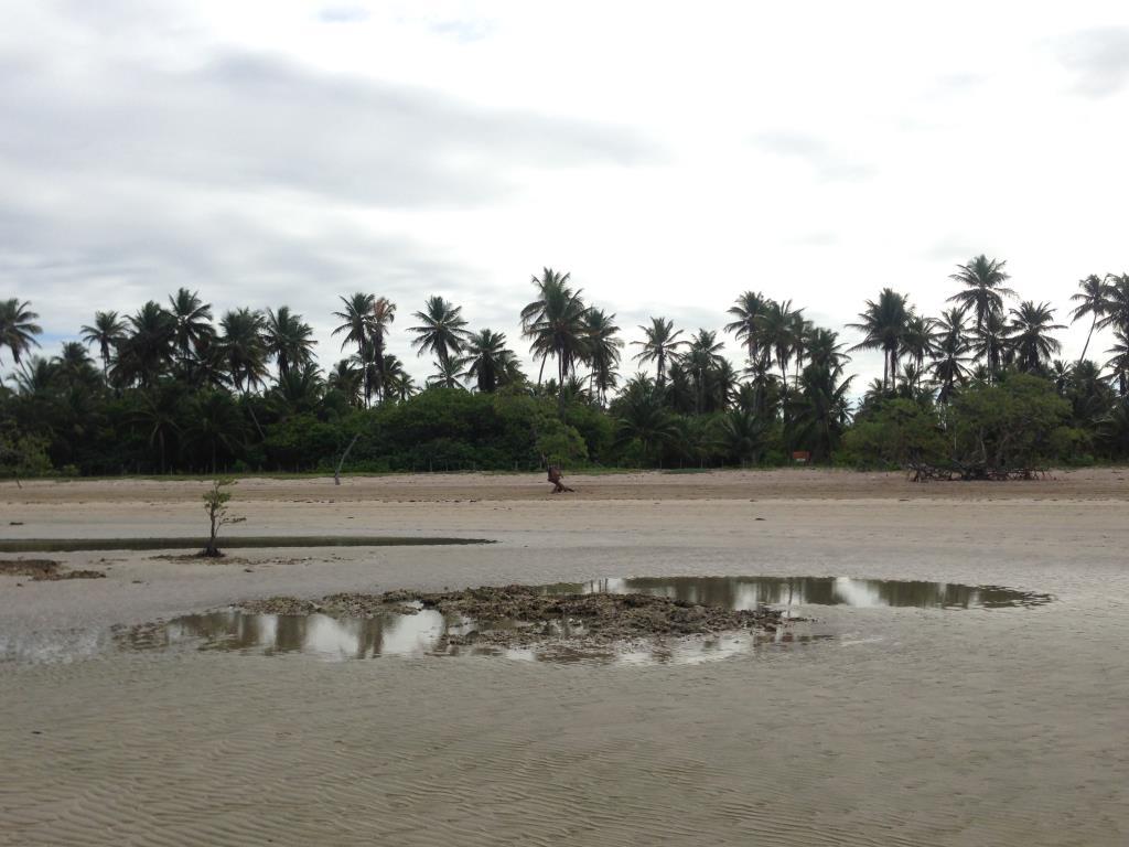 Ótimo Terreno Na Quinta Praia  6