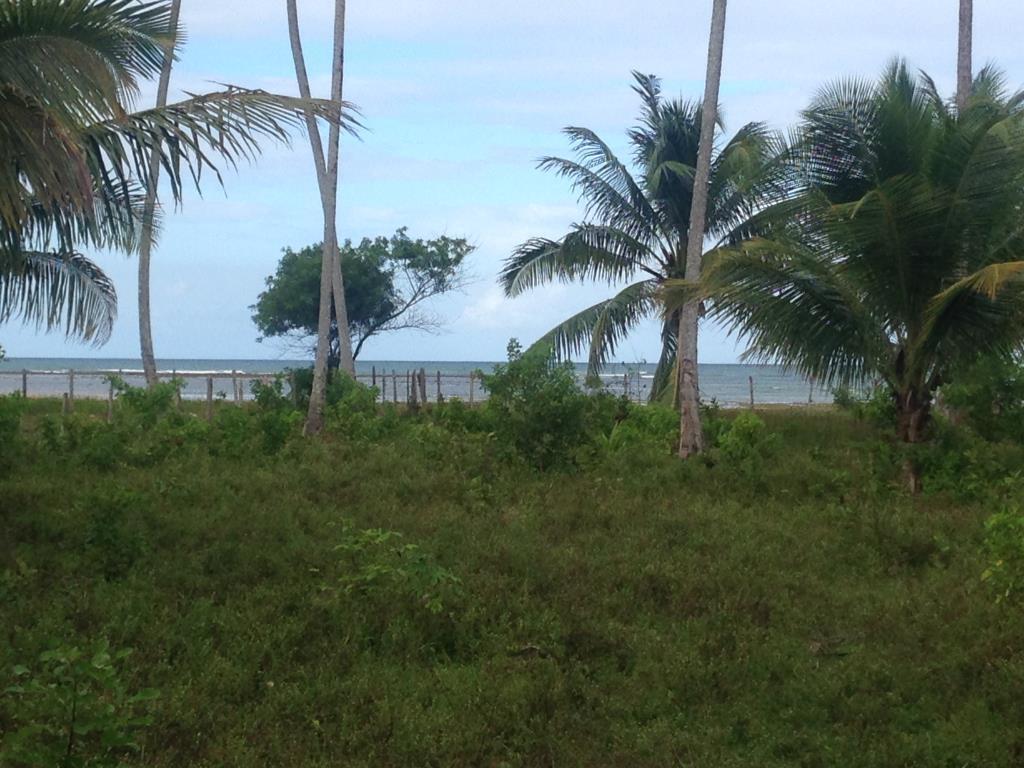 Ótimo Terreno Na Quinta Praia  8