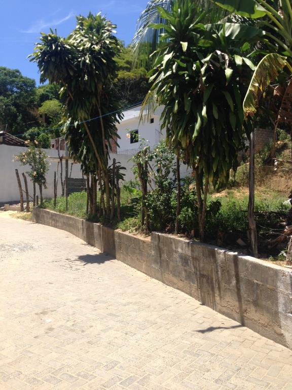 Ótimo Terreno Na Rua Da Lagoa  1