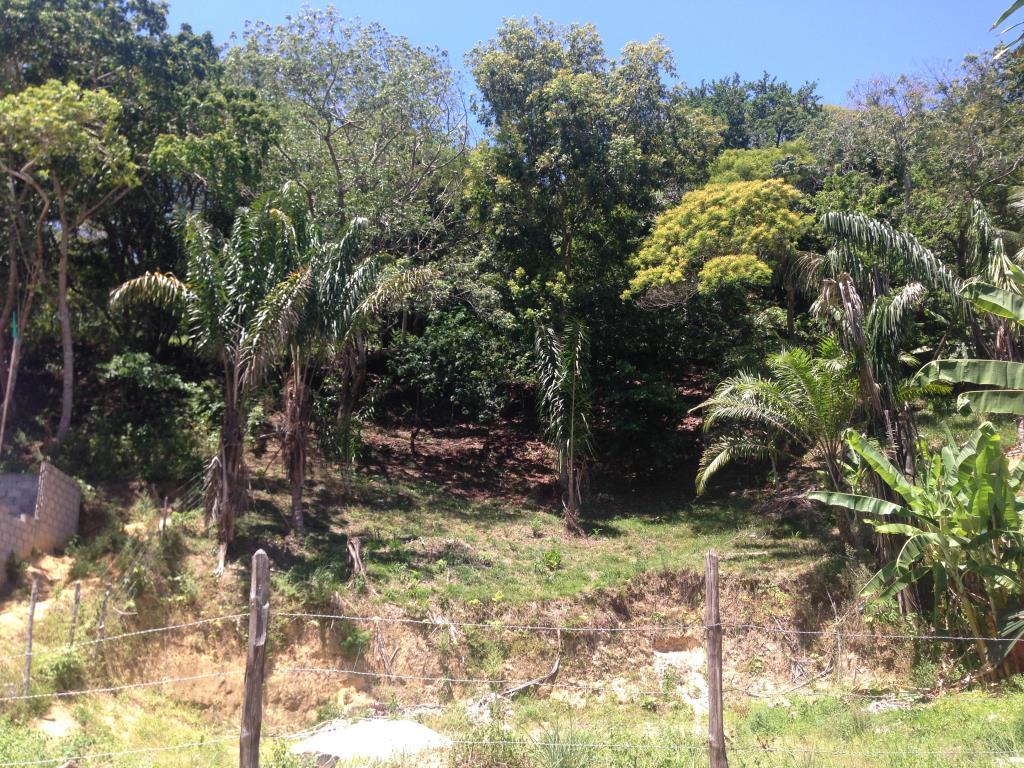 Ótimo Terreno Na Rua Da Lagoa  2