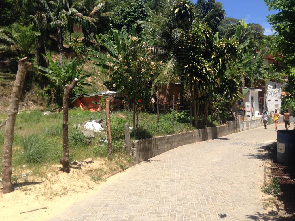 Ótimo Terreno Na Rua Da Lagoa  4