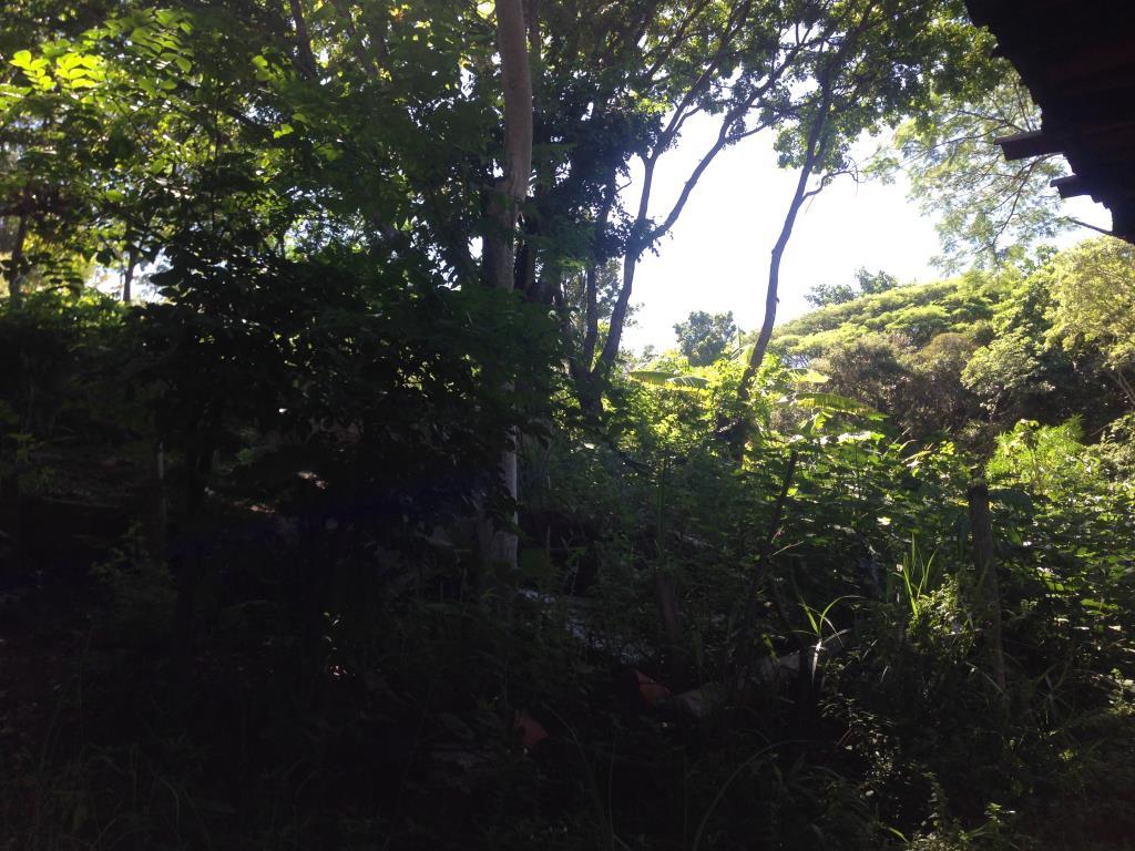 Otimo Terreno Perto Da Vila Mas Numa Parte Tranquila Do Morro De Sao Paulo 1