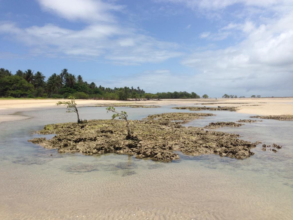 Praia do Pratigi 5