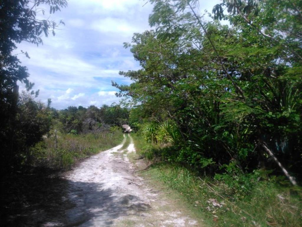 Site Well Located With Access To Pitinga Beach Club Med / Land View 14