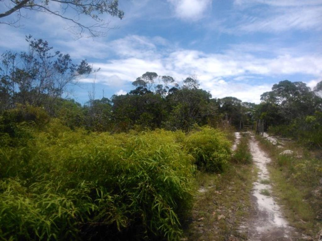Site Well Located With Access To Pitinga Beach Club Med / Land View 2
