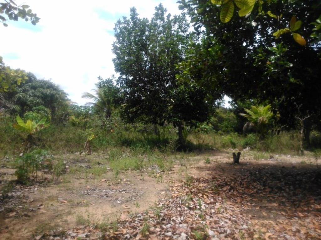 Site Well Located With Access To Pitinga Beach Club Med / Land View 4