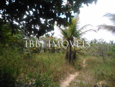 Site Well Located With Access To Pitinga Beach Club Med / Land View 5