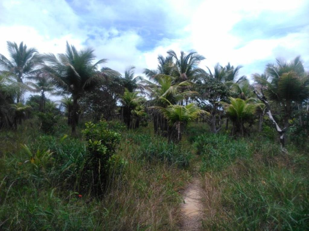 Site Well Located With Access To Pitinga Beach Club Med / Land View 6