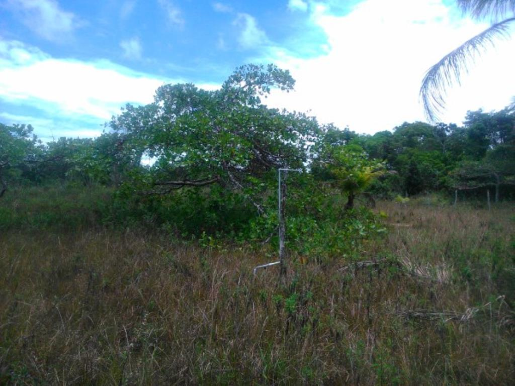 Site Well Located With Access To Pitinga Beach Club Med / Land View 9