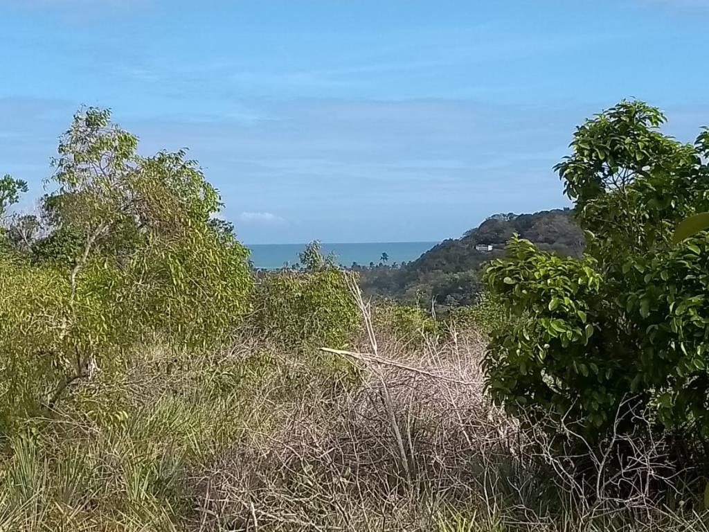 Sitio Com Vista Para O Mar 1