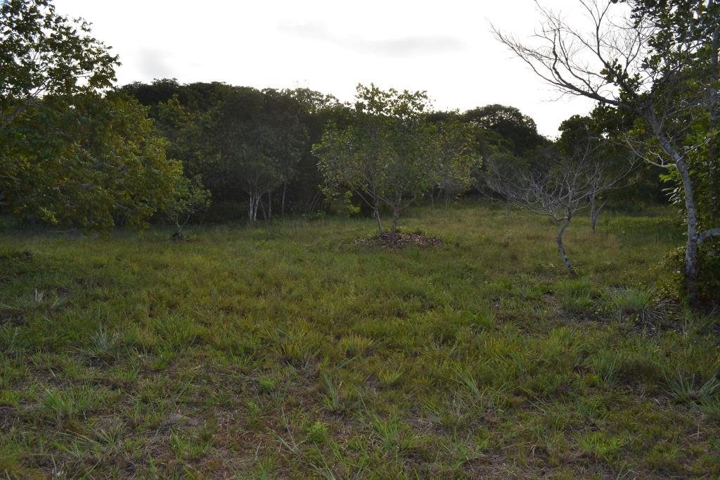 Land 150 M From The Beach. 4