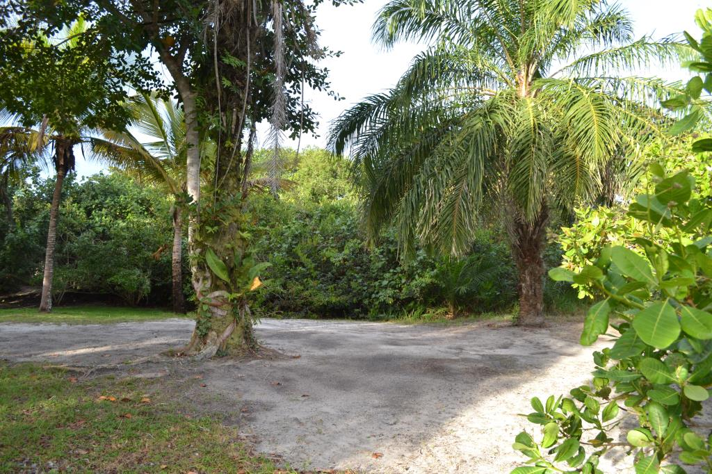 Land 150 M From The Beach. 9