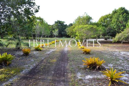 Land 150 M From The Beach. 11