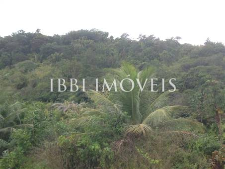 Ample Plot Near Gamboa Beach 8