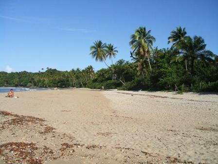 Land Beira Mar with 6,000m2 5