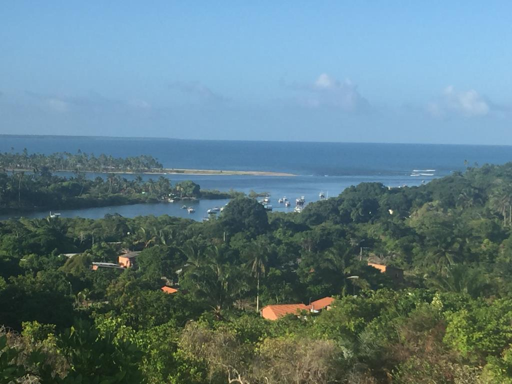 Beautiful beachfront land with an excellent location near to Velha Boipeba 12