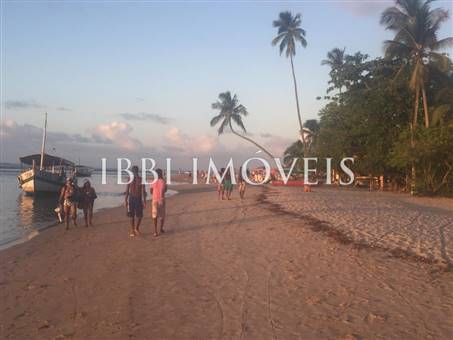 Beautiful beachfront land with an excellent location near to Velha Boipeba 3