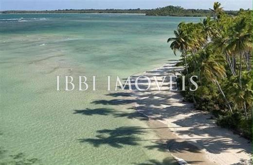 Beautiful beachfront land with an excellent location near to Velha Boipeba 7