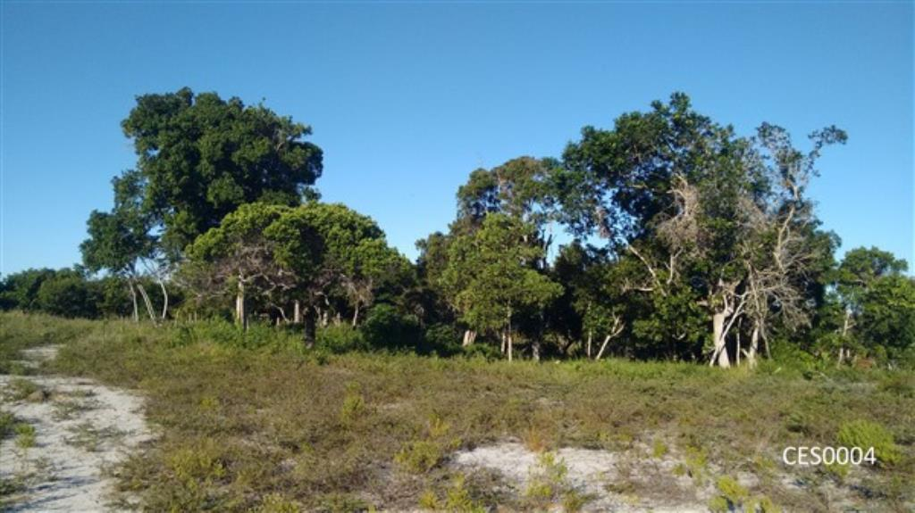 Land Well Located In A Lookout Next Da Taperapuan Beach With Partial View To The Sea 1