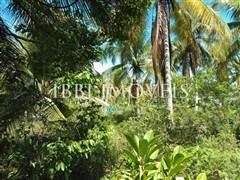 Terreno Bem Próximo À Praia 5