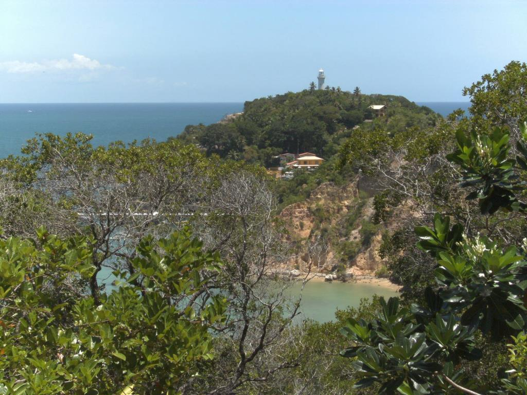 Land With Beautiful Sea View 6