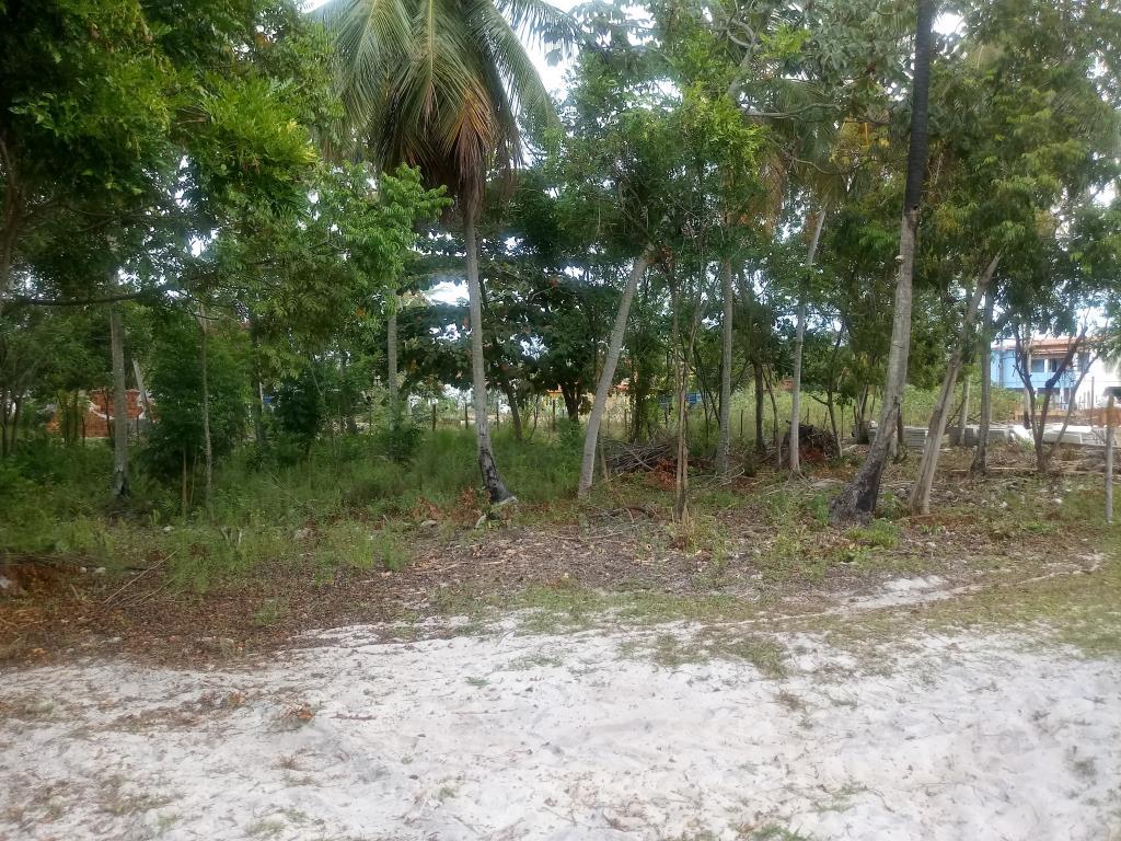 Terrenos Próximos A Quarta Praia 5