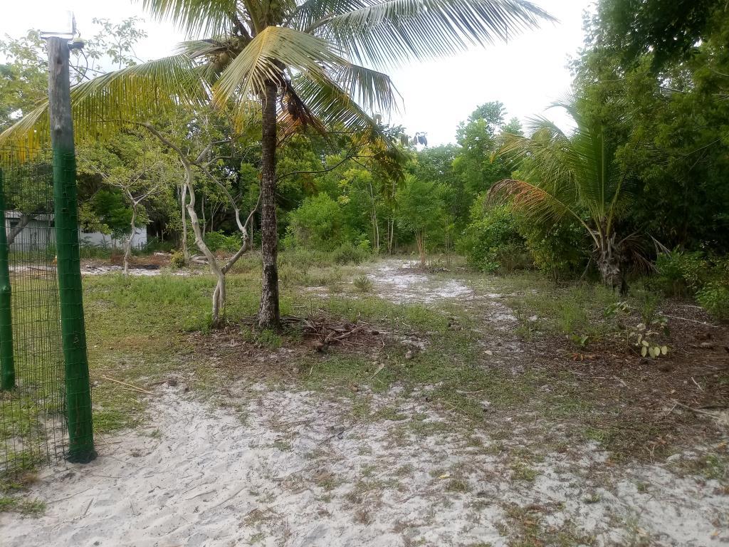 Terrenos Próximos A Quarta Praia 10