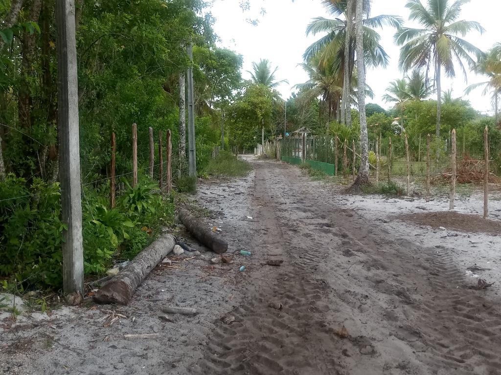 Terrenos Próximos A Quarta Praia 13