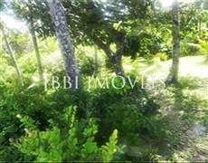 Land Beachfront Moreré Beach 7