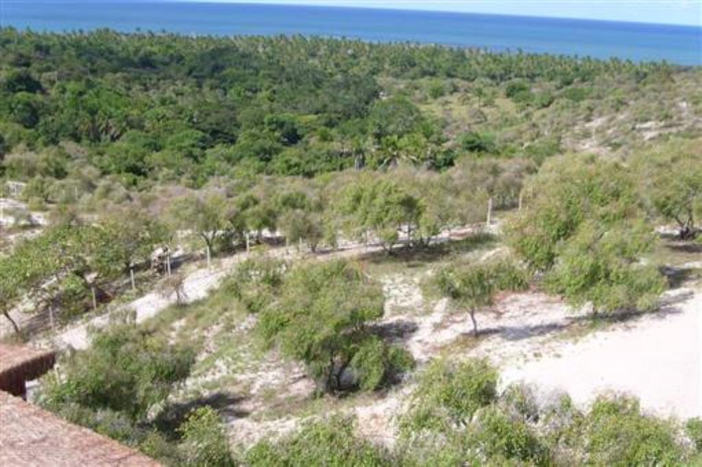 Incredibile terra sull'isola. 2