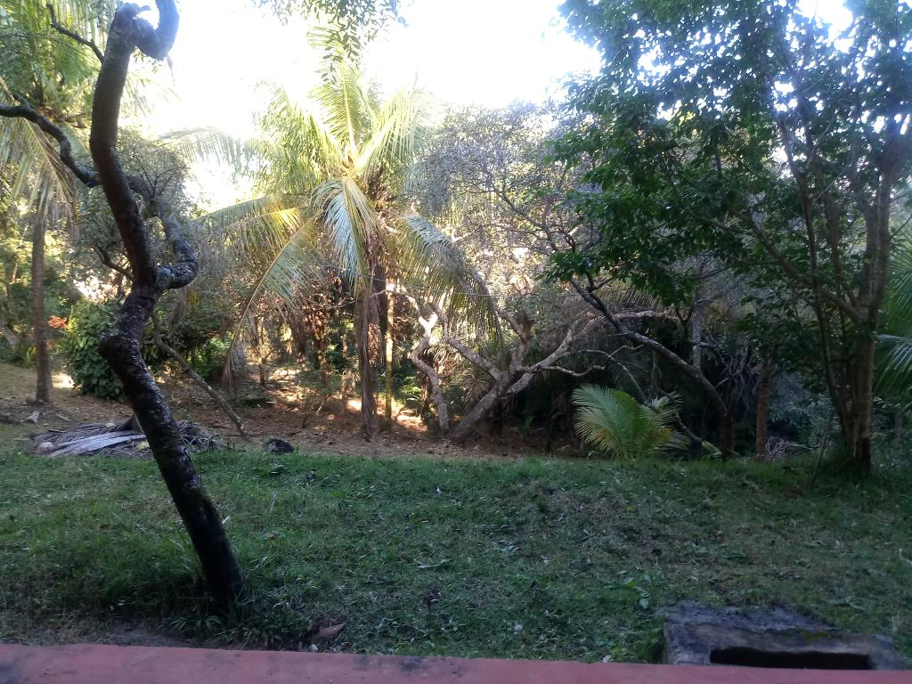 Terreno Na Vila De Moreré 2