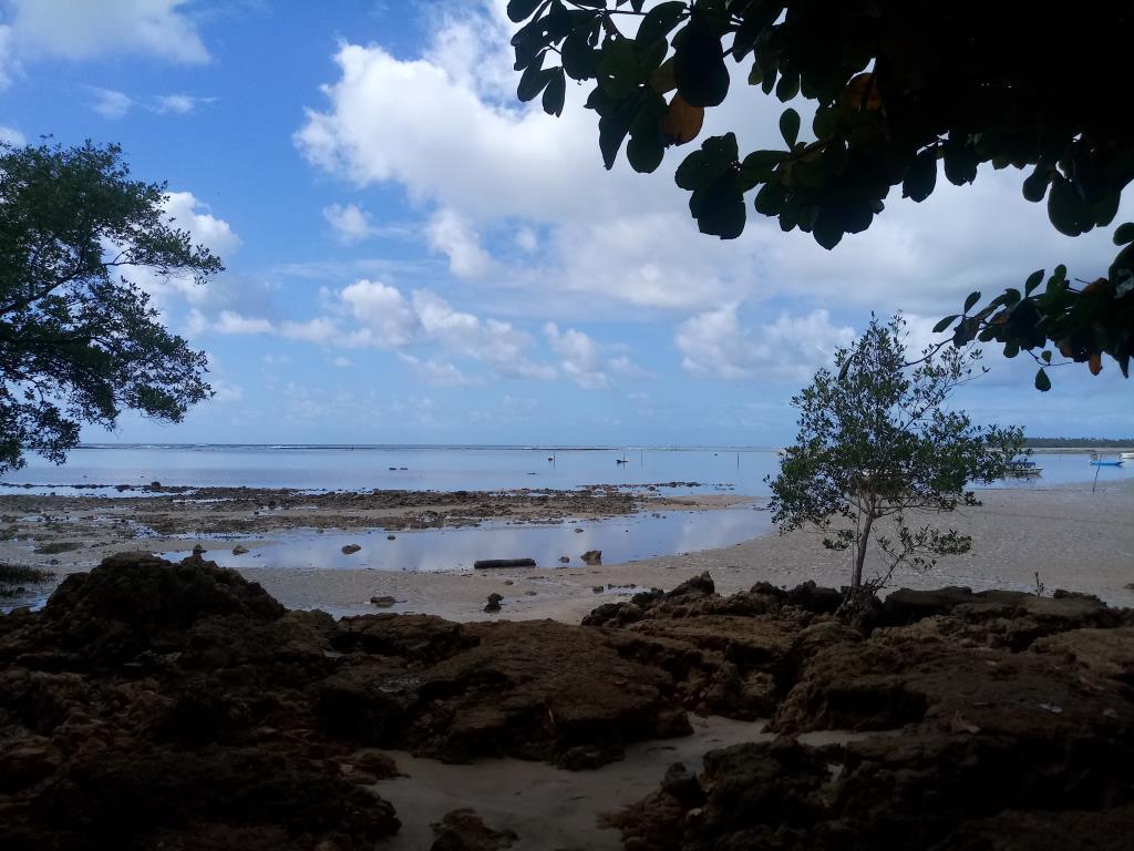 Terreno Na Vila De Moreré 7