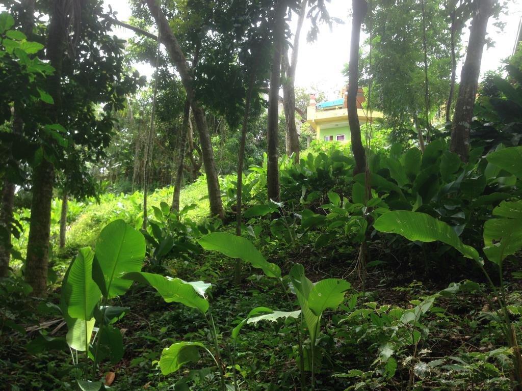 Hermoso terreno en condominio con vista 14