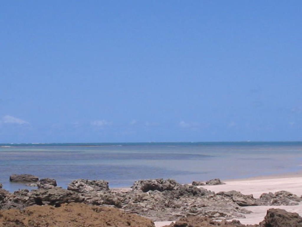 Terra vicino alla spiaggia 6