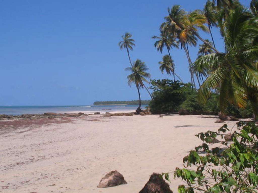 Terra vicino alla spiaggia 5