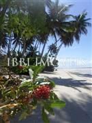 Terrenos Beira-Mar Em  6
