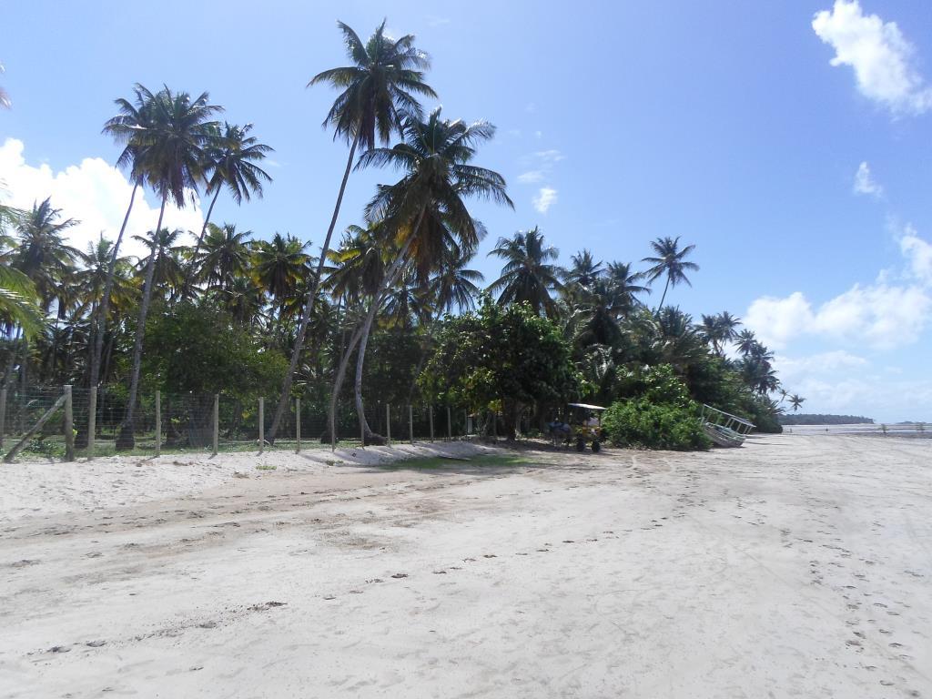 Terrenos Em Condomínio Na 4 Praia 7