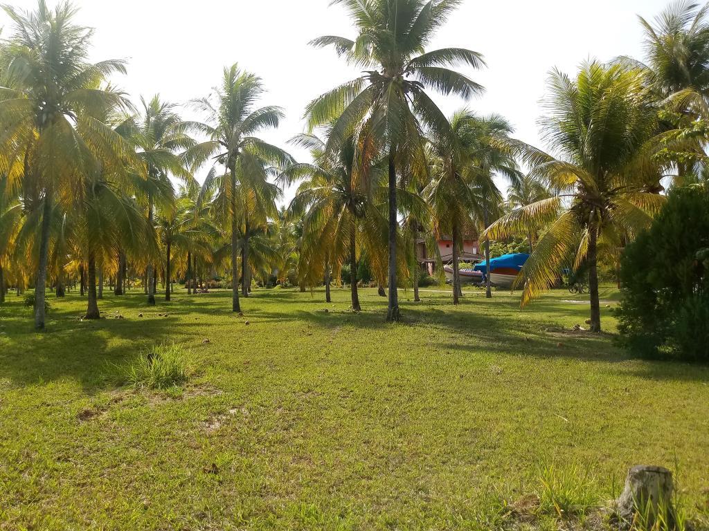 Terrenos Em Condomínio Na 4 Praia 10