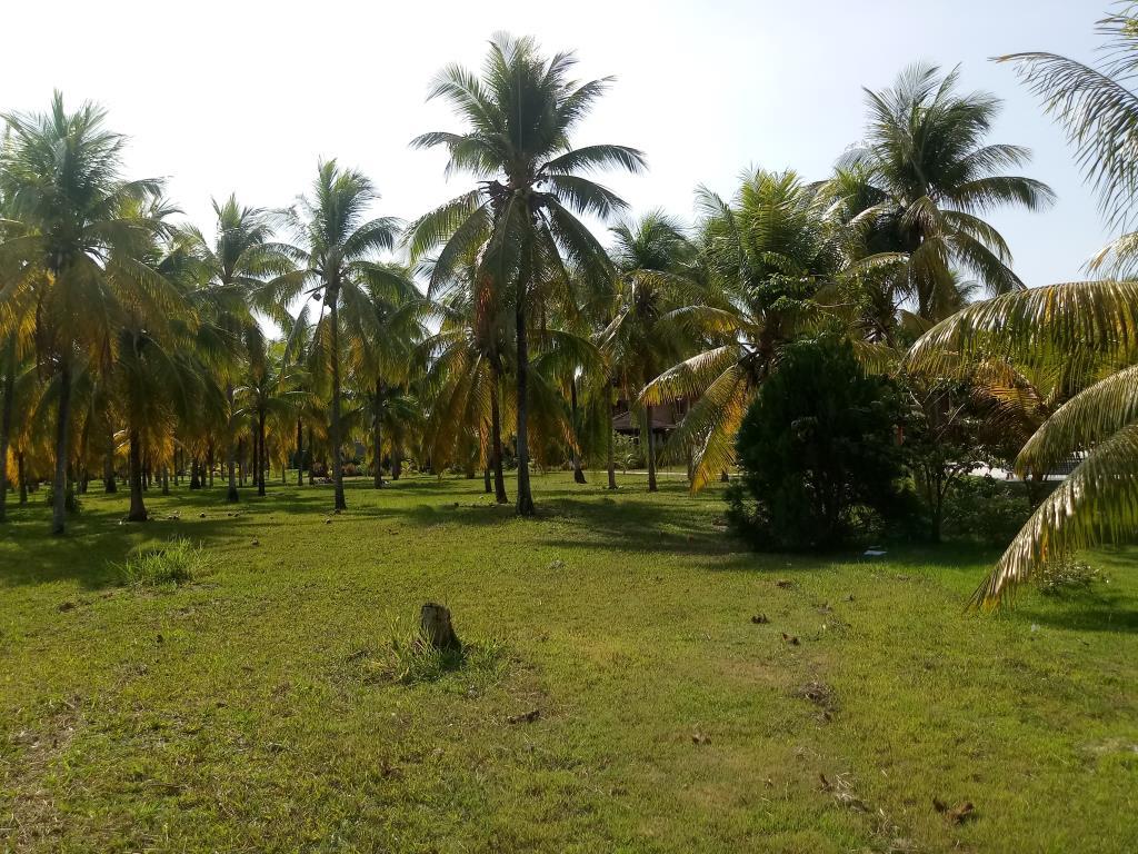 Terrenos Em Condomínio Na 4 Praia 9