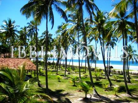 Beautiful House with 58m of beach located close to Ilheus 4